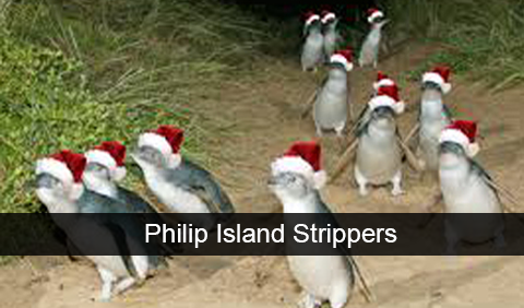 Philip-Island